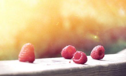 5 dingen die je nog niet wist over je darmen