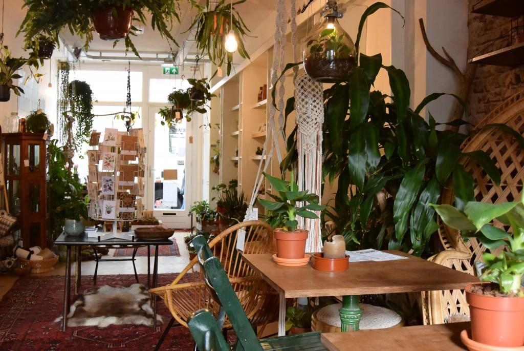 Oerwoud Den Bosch - www.puursuzanne.nl