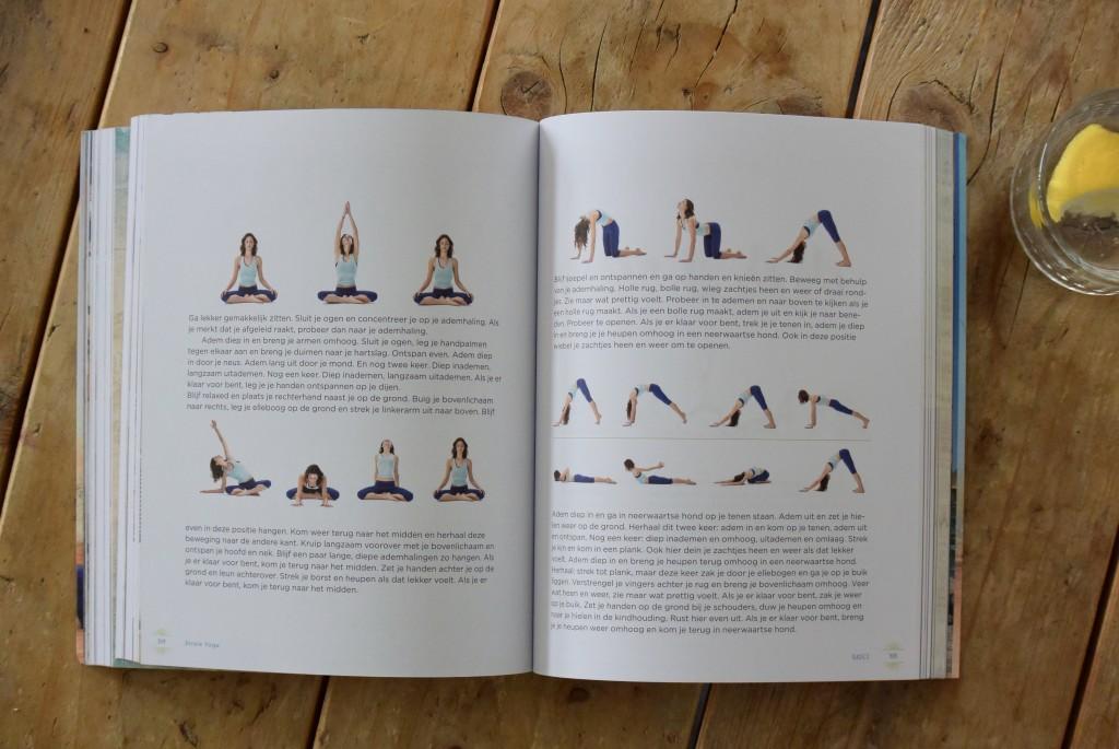 Strala yoga - www.puursuzanne.nl