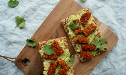 Spicy tempeh crackers