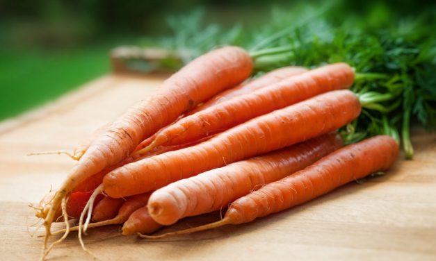 Recepten met wortel