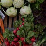 6 voedingstips voor stressvolle dag