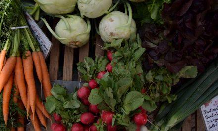 Op foodtour door Nedersaksen – Duitsland