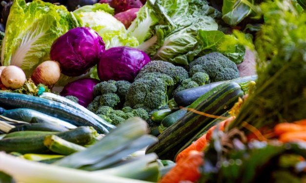 6 tips om gezond plantaardig te eten